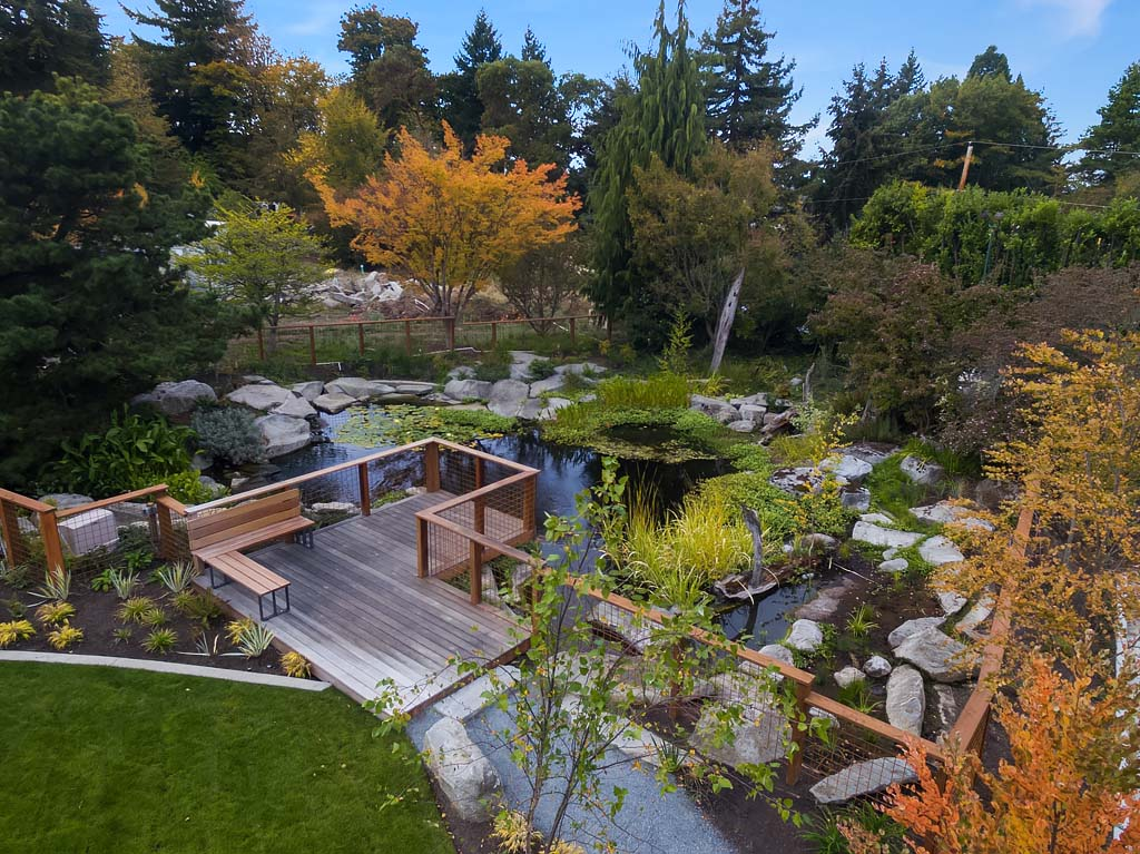 Summerwell on Mercer Island-Community Koi Pond Aerial